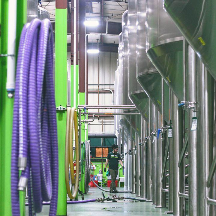 Noções básicas de fabricação de cerveja: como sua bebida favorita é feita